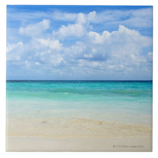 Mexico, Playa Del Carmen, tropical beach Tile