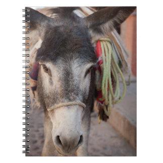 Mexico, San Miguel De Allende 2 Notebooks