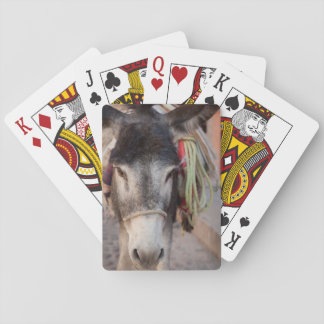 Mexico, San Miguel De Allende 2 Playing Cards