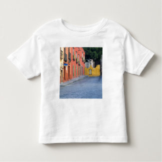 Mexico, San Miguel de Allende, Homes along Toddler T-Shirt
