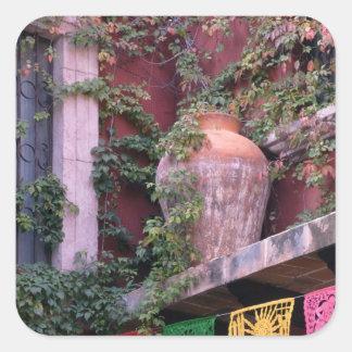 Mexico, San Miguel de Allende, Ivy, clay pot, Square Sticker