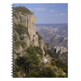 Mexico, State of Chihuahua, Copper Canyon. THIS 2 Spiral Note Book