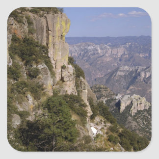 Mexico, State of Chihuahua, Copper Canyon. THIS 2 Square Sticker