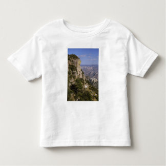 Mexico, State of Chihuahua, Copper Canyon. THIS 2 Toddler T-Shirt