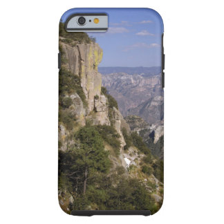 Mexico, State of Chihuahua, Copper Canyon. THIS 2 Tough iPhone 6 Case