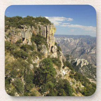 Mexico, State of Chihuahua, Copper Canyon. THIS Coaster