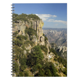 Mexico, State of Chihuahua, Copper Canyon. THIS Notebooks