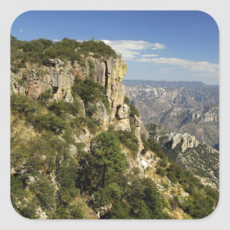 Mexico, State of Chihuahua, Copper Canyon. THIS Square Sticker