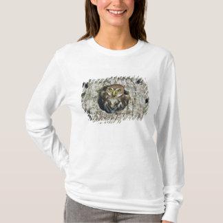 Mexico, Tamaulipas State. Ferruginous pygmy owl T-Shirt