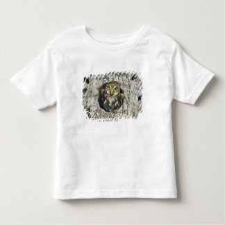 Mexico, Tamaulipas State. Ferruginous pygmy owl Toddler T-Shirt