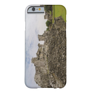Mexico, Tulum, ancient ruins 2 Barely There iPhone 6 Case