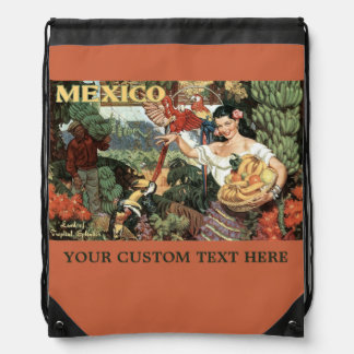 Mexico vintage travel bags