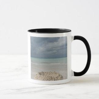Mexico, Yucatan, Isla Mujeres Island of Mug