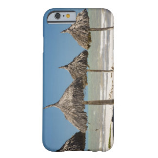 Mexico, Yucatan Peninsula, Progreso. Thatch Barely There iPhone 6 Case