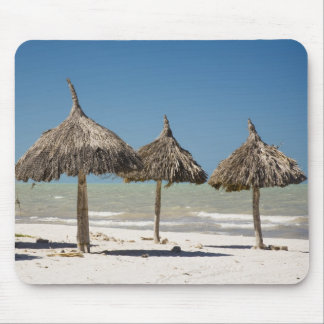 Mexico, Yucatan Peninsula, Progreso. Thatch Mouse Mat