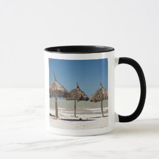 Mexico, Yucatan Peninsula, Progreso. Thatch Mug