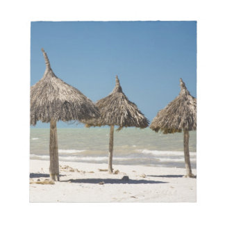 Mexico, Yucatan Peninsula, Progreso. Thatch Notepad