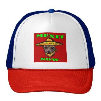 MEXIT NOW CAP