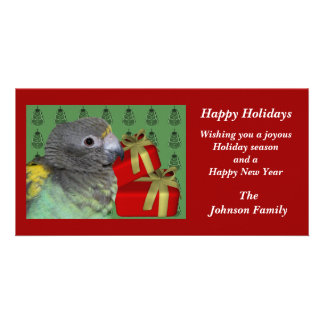 Meyers Parrot Animal Christmas Holiday Card Photo Greeting Card