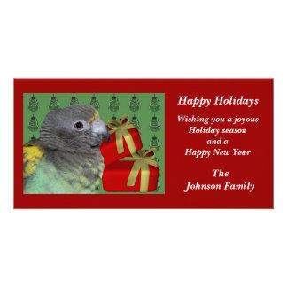 Meyers Parrot Animal Christmas Holiday Card Photo Greeting Card