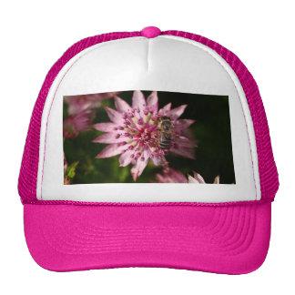 _MG_8091 MESH HATS