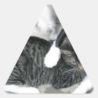 Mia & Gizmo Triangle Sticker
