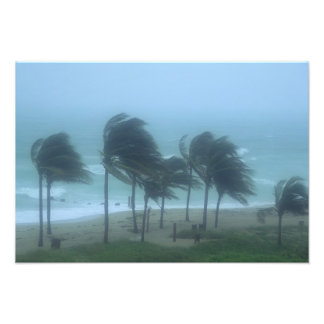 Miami Beach, Florida, hurricane winds lashing Photo Print