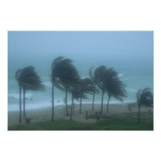 Miami Beach, Florida, hurricane winds lashing Poster
