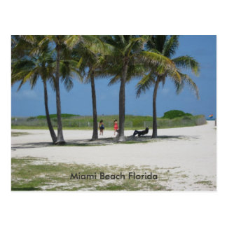 Miami Beach Florida Postcard