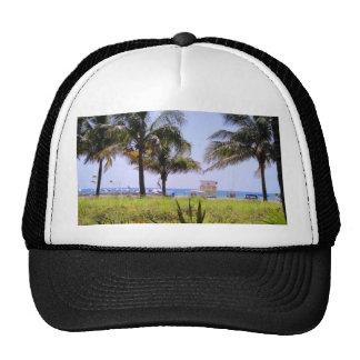 Miami Beach Palms Cap