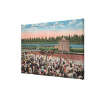 Miami, FL - View of Hialeah Park with Horse Canvas Print