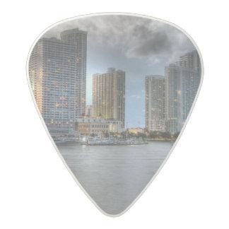 Miami, Florida Acetal Guitar Pick