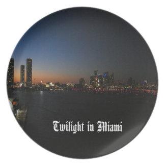 Miami Florida scenic Plate