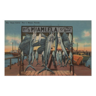 Miami, Florida - View of Pier 5 with Caught Fish Poster