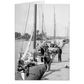 Miami Sailboats, 1905 Card