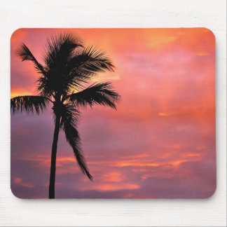Miami's Sunset Mouse Mat