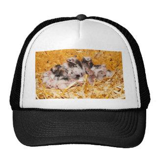 mice-3958 cap