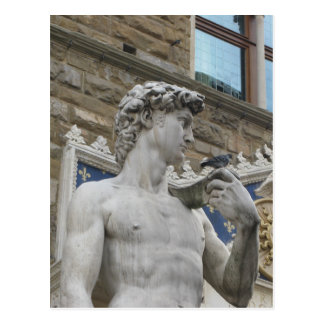 Michelangelo's David, Florence Italy Postcard