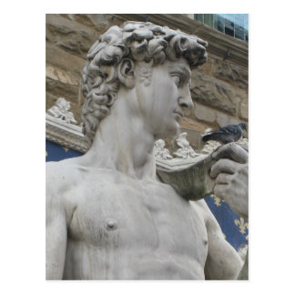 Michelangelo's David  Florence, Italy Postcard