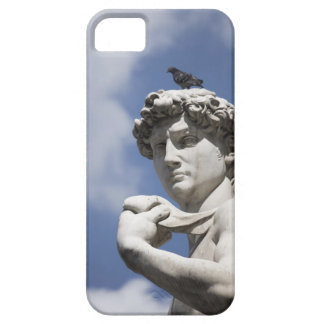 Michelangelo's David in the Piazza della iPhone 5 Cases