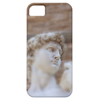 Michelangelo's statue DAVID detail close up view iPhone 5 Cases