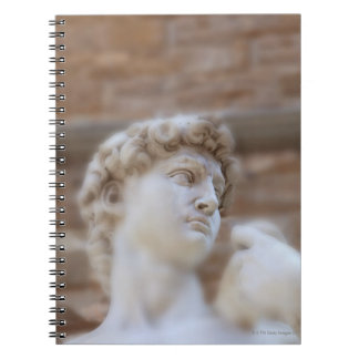 Michelangelo's statue DAVID detail close up view Spiral Notebook