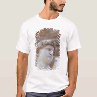 Michelangelo's statue DAVID detail close up view T-Shirt