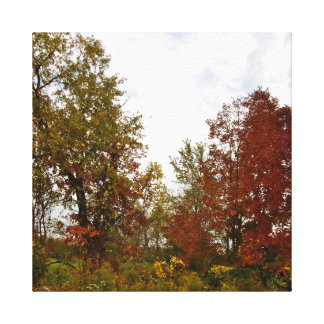 Michigan Autumn Treescape Printed Canvas Gallery Wrapped Canvas