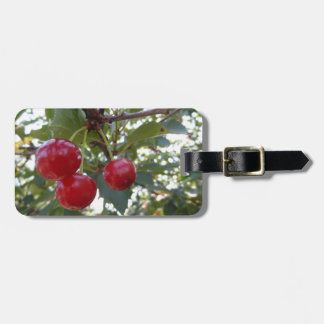 Michigan Cherries Luggage Tag