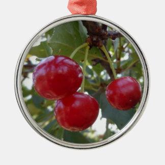 Michigan Cherries Silver-Colored Round Decoration