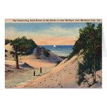 Michigan City Indiana Sand Dunes 1940 Cards