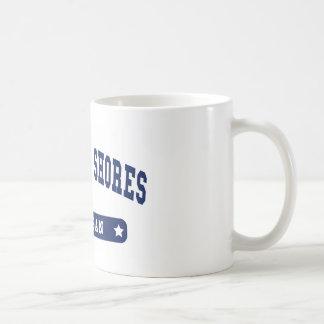Michigan College Style tee shirts Mug
