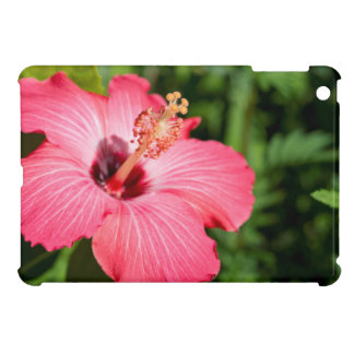 Michigan, Dearborn. Detail Of Pink Hibiscus iPad Mini Cases