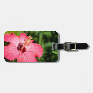 Michigan, Dearborn. Detail Of Pink Hibiscus Luggage Tag